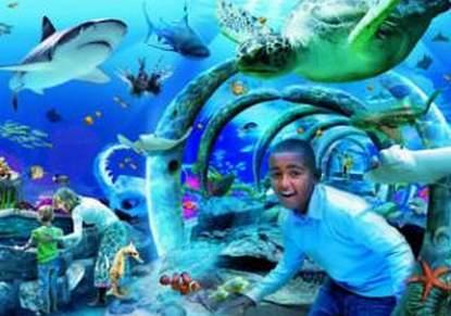 London SEA LIFE Aquarium